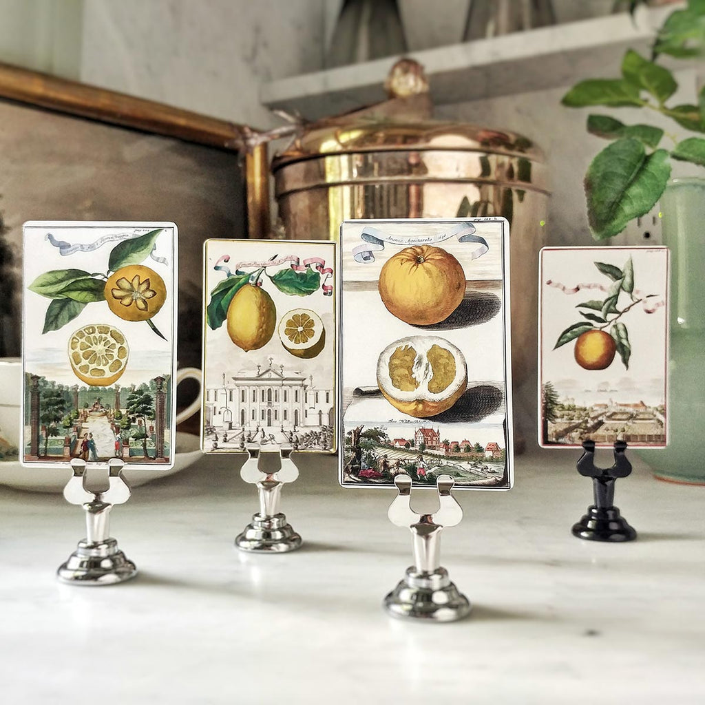 The Punctilious Mr. P's 'Citrus Gardens' place cards