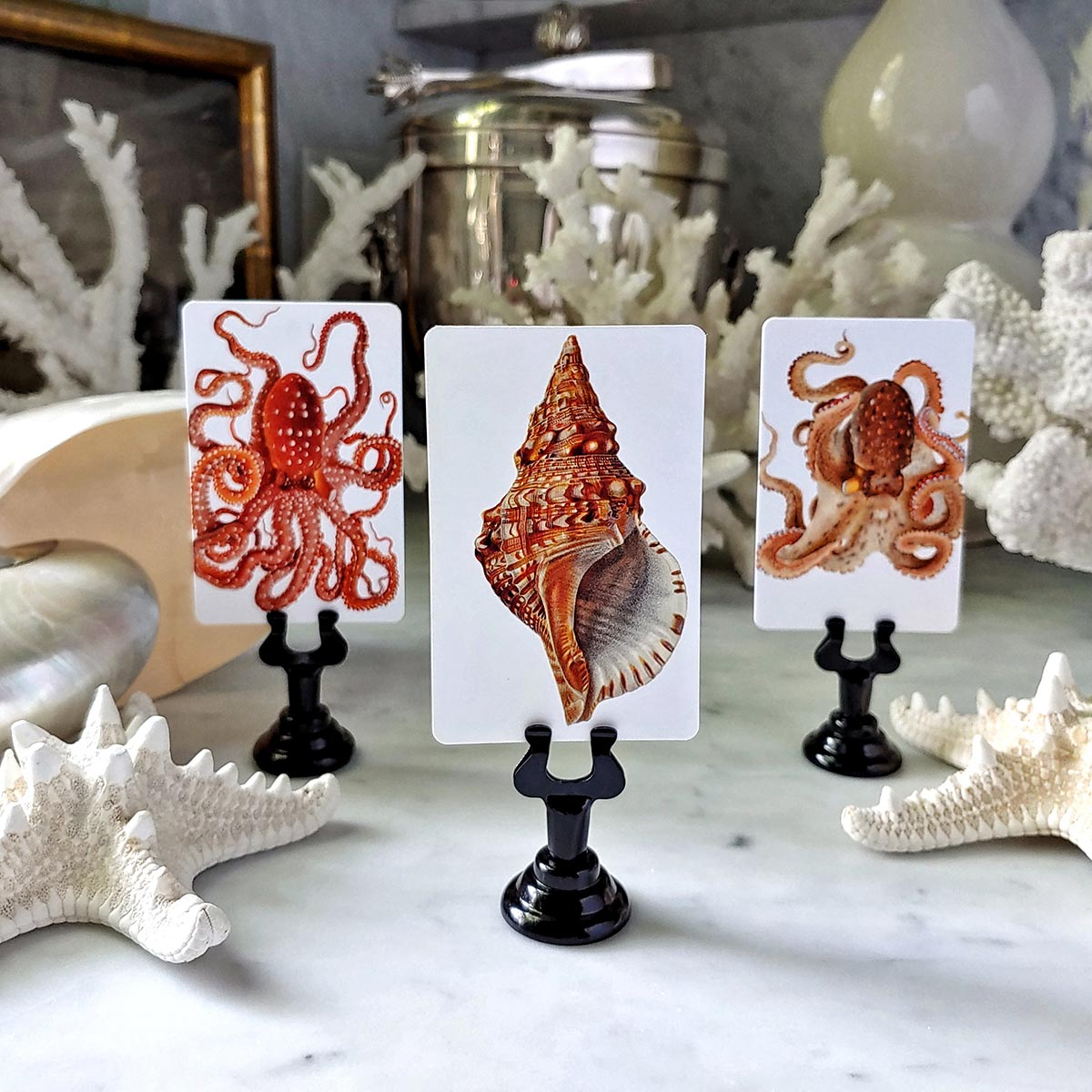 The Punctilious Mr. P's 'Octopodes & Conch' place cards