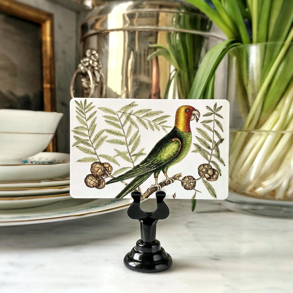 The Punctilious Mr. P's 'Parakeets' place cards