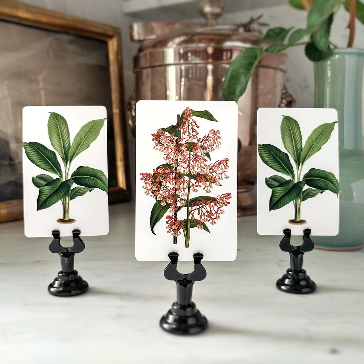 The Punctilious Mr. P's 'Tropical Foliage' place cards