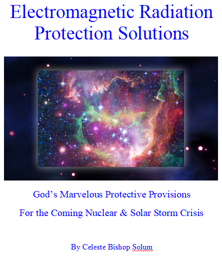 Electromagnetic Radiation Protection Solutions~eBook