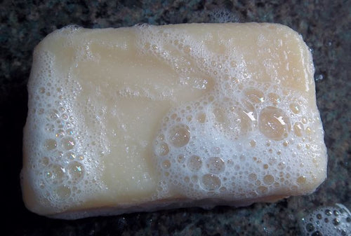 Aloe and Eucalyptus Shampoo Bar