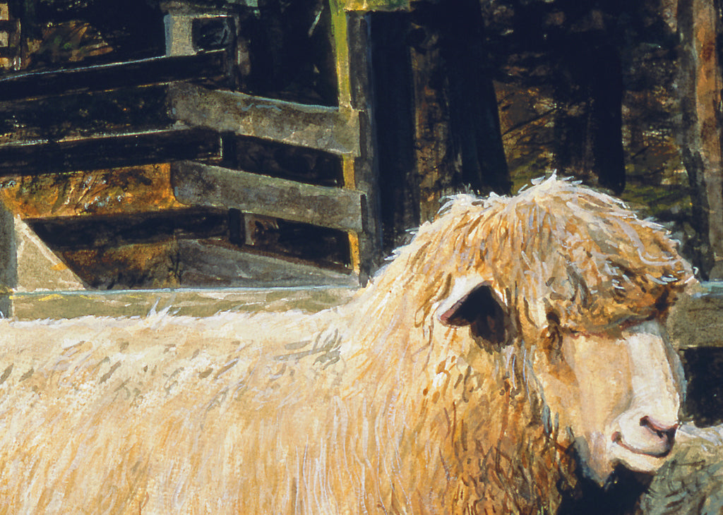 Two Ewe Sheep in Rainy Barnyard Painting Giclée Print Crop 1