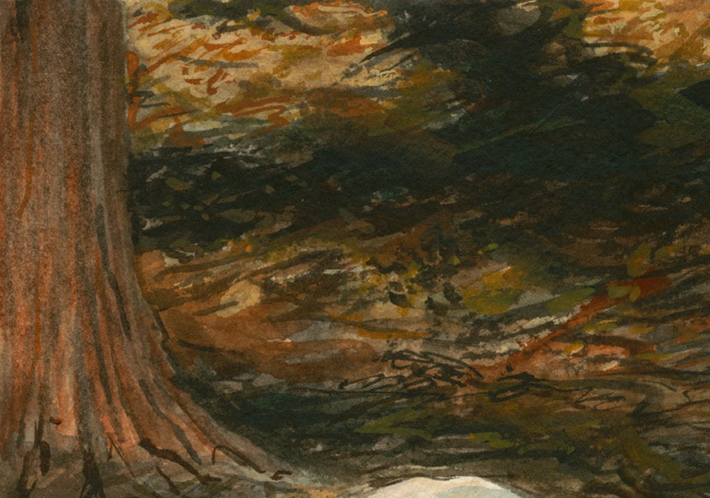 Coopworth Lamb in Shaded Trees Painting Giclée Print Crop 3