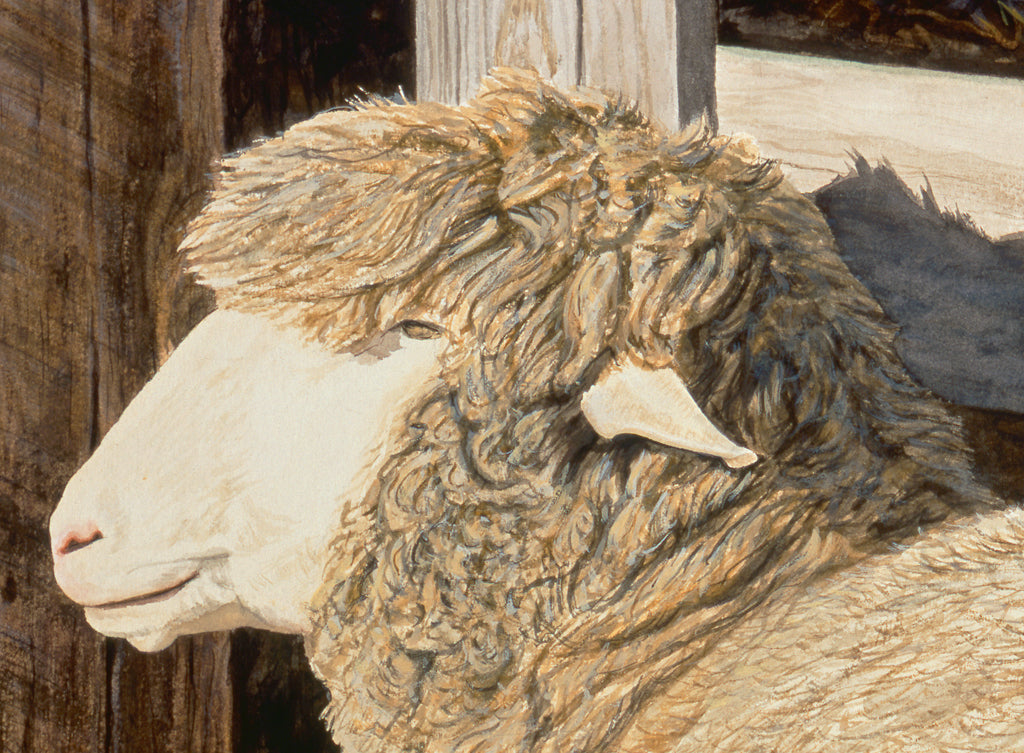 Columbia Ewe Sheep and Lamb Painting Giclée Print