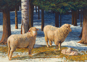 Two Columbia Ewes and Lambs on Sunny Snowy Day Painting Giclée Print