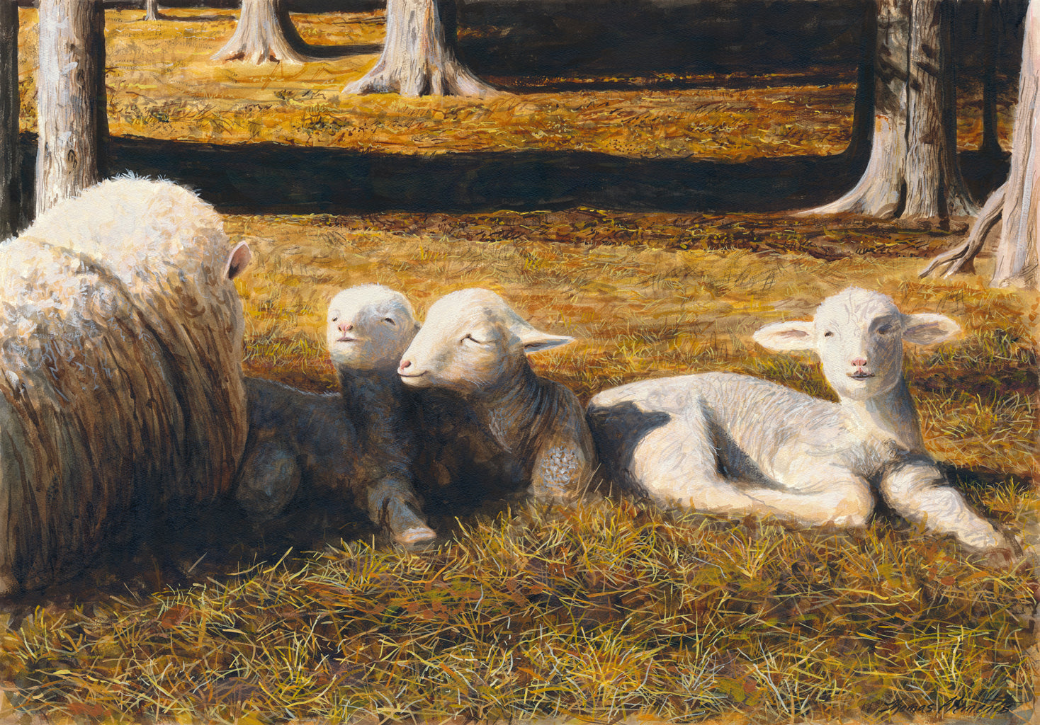 Ewe Sheep and Three Triplet Lambs Resting Painting Giclée Print