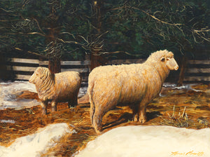 Two Sheep in Snowy Barnyard Pasture Painting Giclée Print