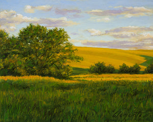 Sunny Palouse Farm Field with Trees Painting Giclée Print