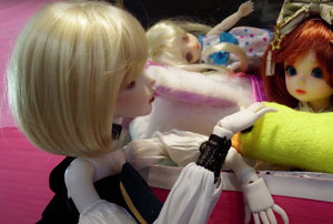 BJD Dolls Visit Pet Store + Dolls Playing