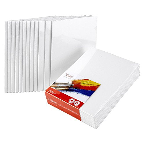 "Canvas Panels 24 Pack - 12""X12"" Super Value Pack Artist Canvas Panel Boards for Painting …"