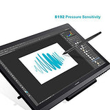 Huion KAMVAS GT-191 Drawing Tablet with HD Screen 8192 Pressure Sensitivity - 19.5 Inch