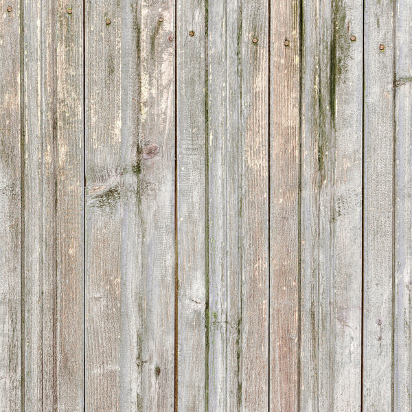 Whitewashed Wood Backdrops
