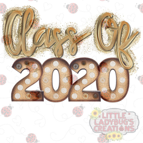 Class of 2020 Sparkles