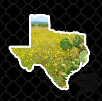 Texas Cactus Decal