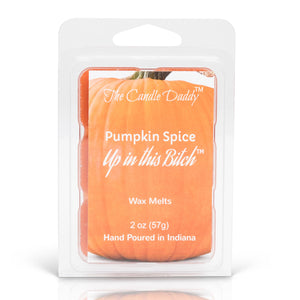 5 packs- Pumpkin Spice Up In This Bitch Wax Melts 5 (five) 2 oz Packs