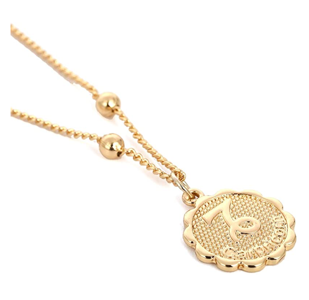 Capricorn zocoin necklace