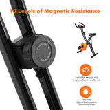 ANCHEER Magnetic Resistance Folding Exercise Bike