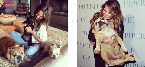 Puddy, Penn, Pippa  and their  Mom Chrissy Teigen