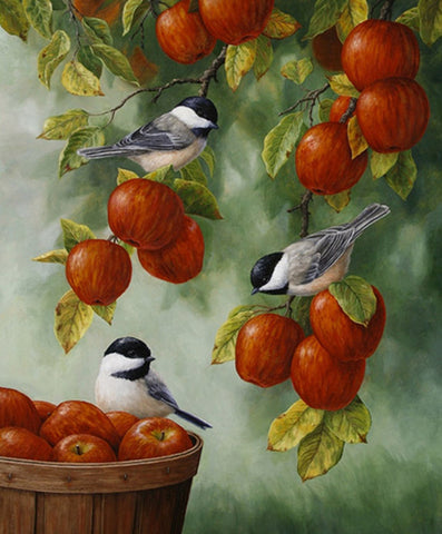 Birds and Red Apples E946