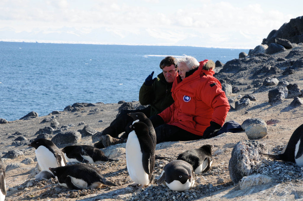Alastair Fothergill and Sir David Attenborough during filming with penguins