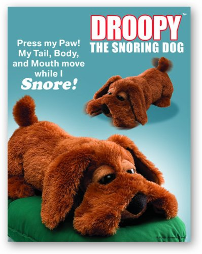 Droopy - Snoring Dog