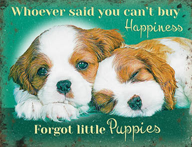 Whoever Said you can't buy happiness - Forgot little puppies (Small)