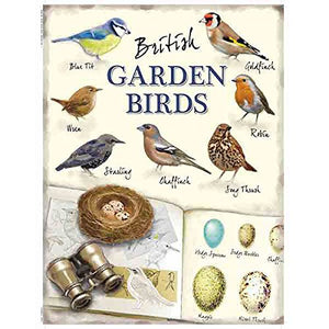 British Garden Birds (Small)