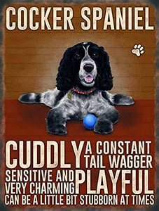 Cocker Spaniel (Small)
