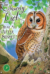 The Tawny Owl - Hear Me After Sunset (Small)