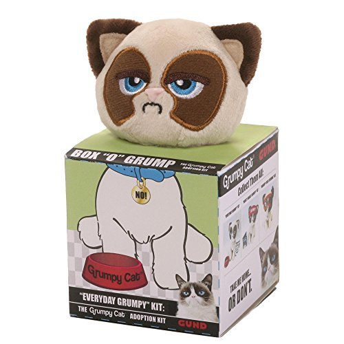 Box 'O' Grump - Everyday Grumpy Cat