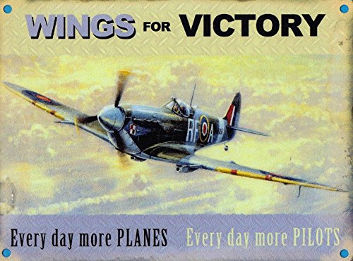 RAF Spitfire - Wings of Victory (Small)