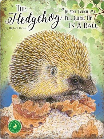 The Hedgehog - If you touch me I'll curl up in a ball (Small)