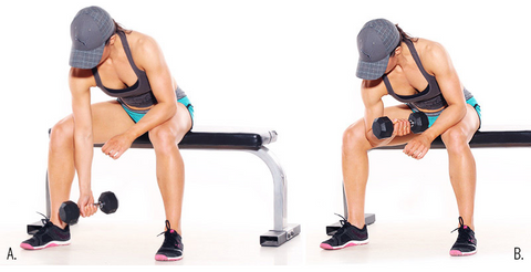 Seated concentration curls