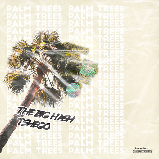 The Big Hash - Palm Trees (feat. Tshego)