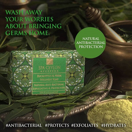 EUCALYPTUS & NEEM - Anti-bacterial Exfoliating Wellness Soap 100g