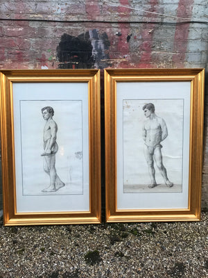 A large pair of Royal Academy male nude pencil drawings