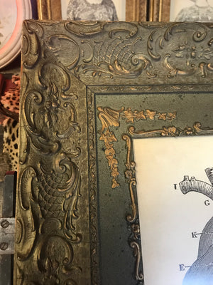 A contemporary anatomical heart print in a 19th Century frame