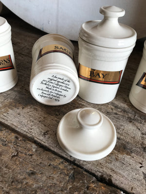 A collection of porcelain apothecary spice jars
