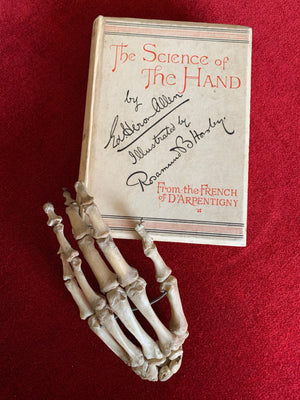 Antiquarian book 'The Science of The Hand' by D'Arpentigny 1895- Palmistry interest