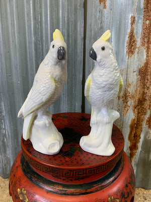 A pair of white porcelain cockatoo statues