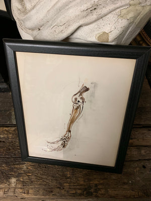 An original Renaissance style anatomical pen and ink drawing of a skeleton arm