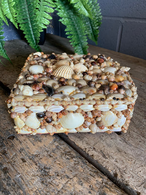 A very large seashell encrusted trinket box