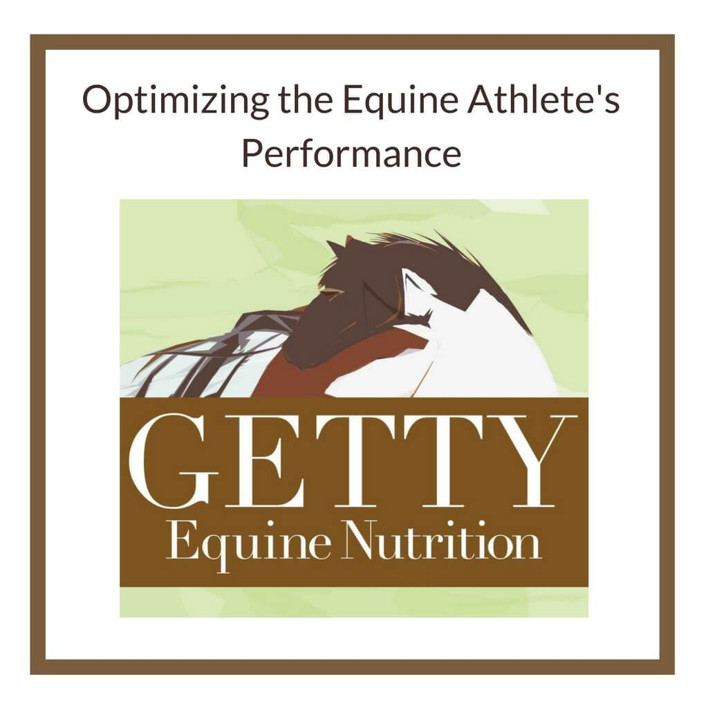 Optimizing the Equine Athlete's Performance - Dr. Getty Seminar