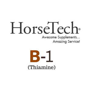 B-1 (Thiamine) for Horses by HorseTech