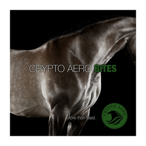 Crypto Aero Bites Whole Food Treats