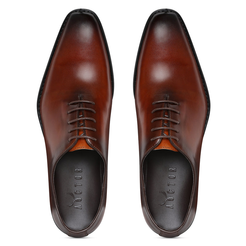 British Oxfords - Brown