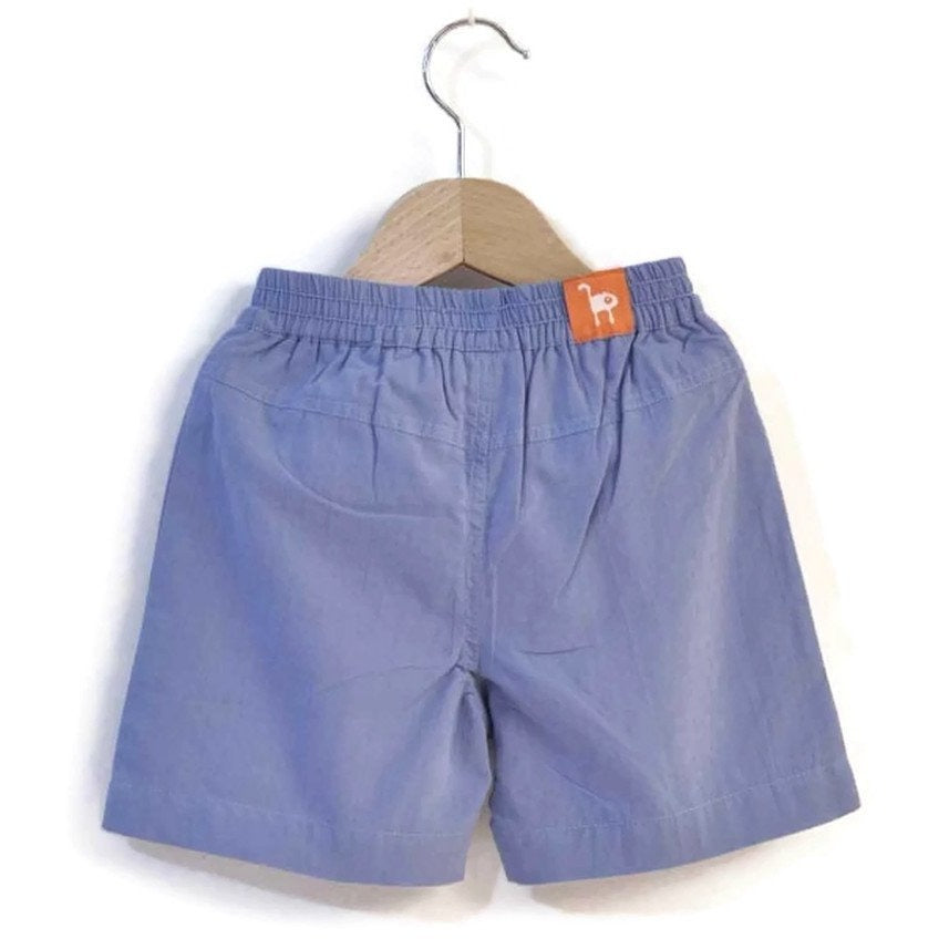 The Blue Surf Shorts