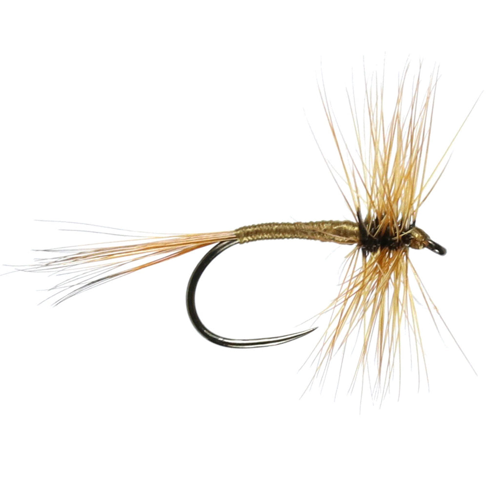 Dark Olive Barbless Hackled Dry (Size 14)