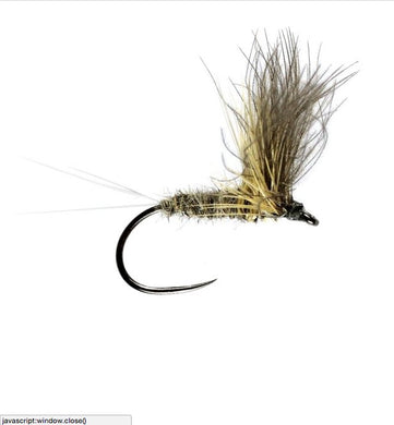Grey Duster CDC Winged Dry Barbless (Size 14)